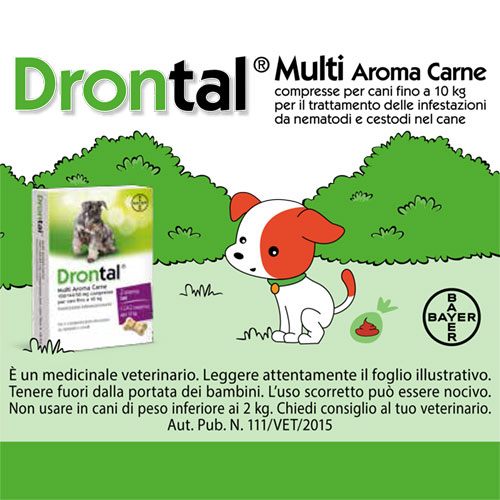 Bayer-Drontal